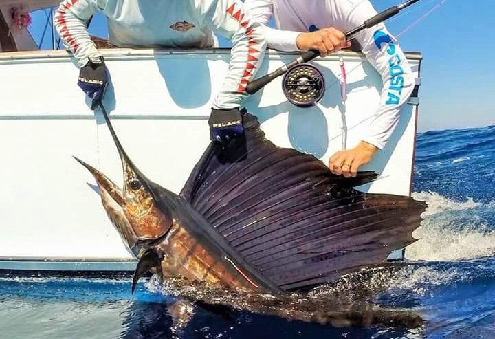 sportfishing-1